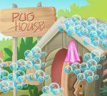 Puppy Pug House Decoration